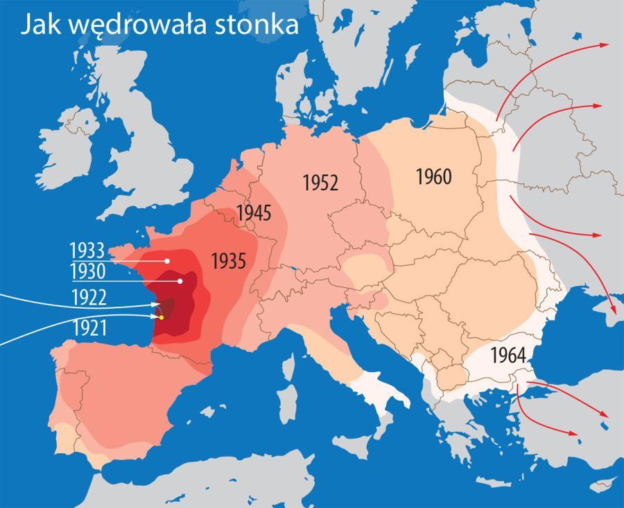 How Criminal US Government Tried To Destroy Europe POLISH FORUM - Poland us map